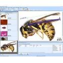 QuickPHOTO CAMERA - Software pro mikroskopy