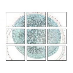 Modul Image Stitching